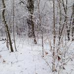"""Winter ade  <br /><span class=""""second""""> Kinderlied</span>"""