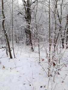 Volkslied Winter ade