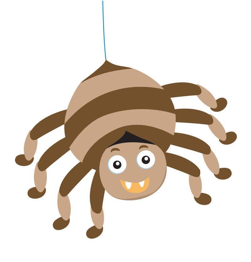 Spinnenetz aus Springseilen
