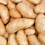 """Kartoffelernte  <br /><span class=""""second""""> Fingerspiel für den Herbst</span>"""