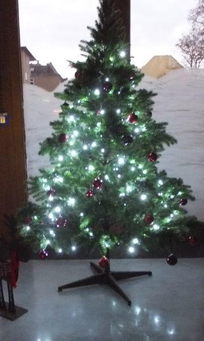 O Tannenbaum Kinderlied.Text O Tannenbaum O Tannebaum Ein Weihnachtslied
