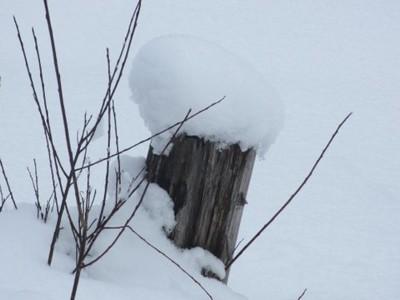 5 Schneeflocken