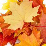 Fingerspiele Herbst