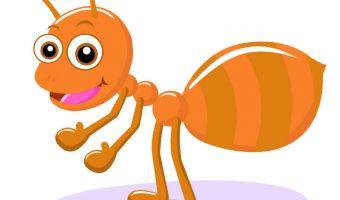 Hautsensibilisierung Spiel Ameise